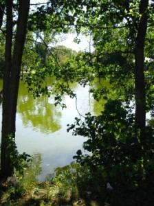 Lyngby - jeziorko